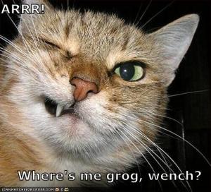 LOLcat%20pirate.jpg